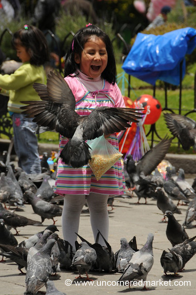 Feeding the Birds - La Paz, Bolivia
