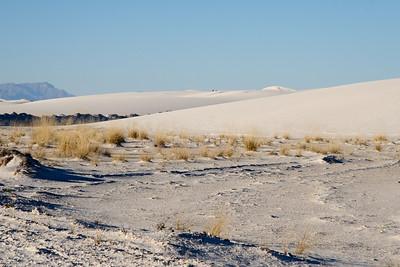 White Sands 11 8 2008