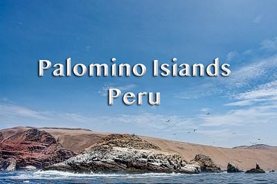 2008 01 16 | Palomino Islands