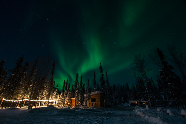 Aurora Chasing Fairbanks Alaska