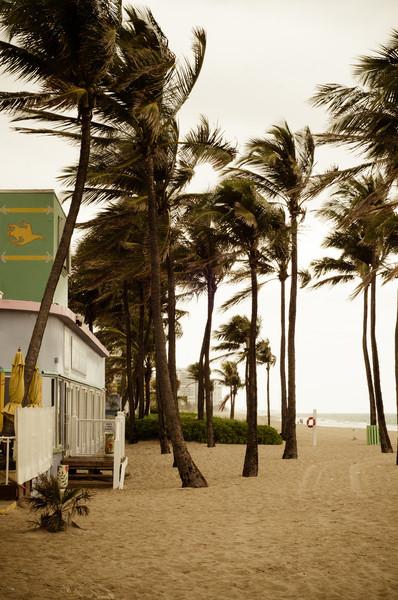 Florida 2013 - Vacation