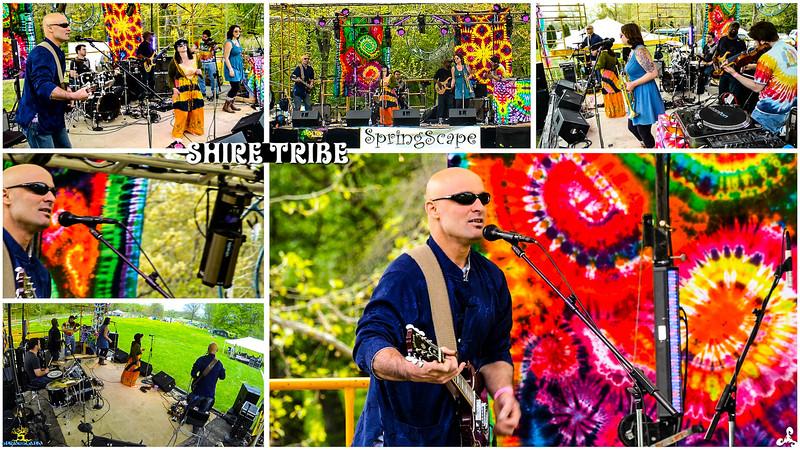 04-30-2016-01-Shire Tribe-SpringScape-ccv.00_57_33_08.Still007.jpg
