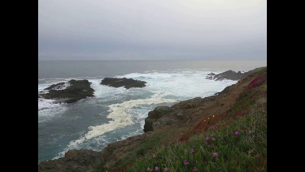 mendocino sunsets april 2014