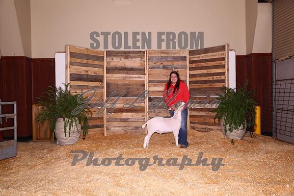 2016 Smith County Livestock Show