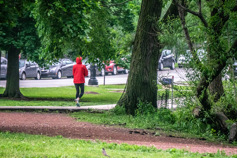 The walker in the park in the red jacket