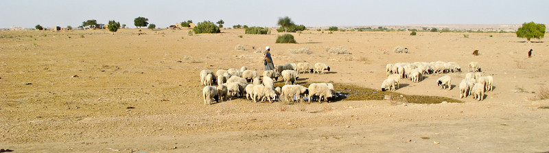 POW Day 5-IMG_6268- Jaisalmer.jpg