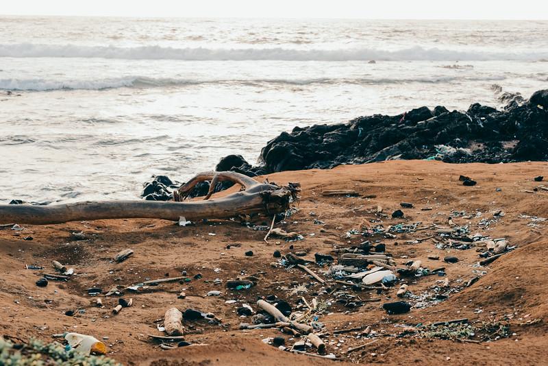 Hawaii20-166.jpg