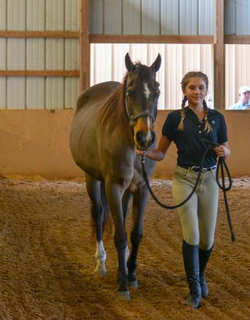 Ocala Riding Academy