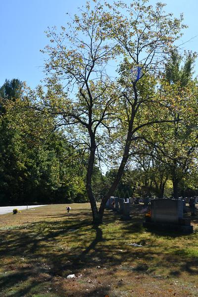 St-Joseph-Cemetery-Oct2019-195.jpg
