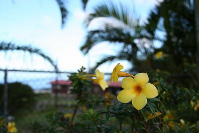 Hawaii Trip - 2007