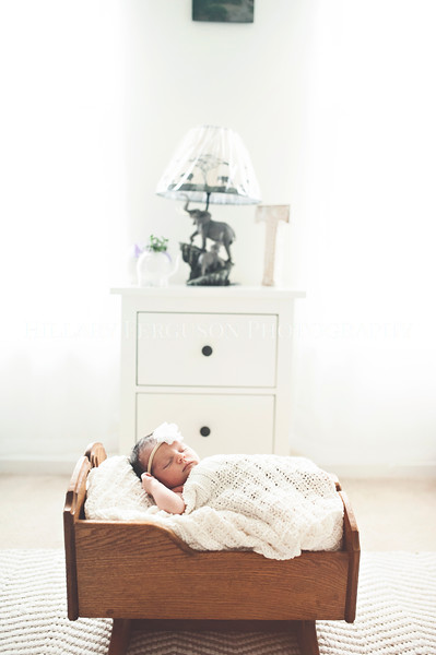 Hillary_Ferguson_Photography_Carlynn_Newborn035.jpg