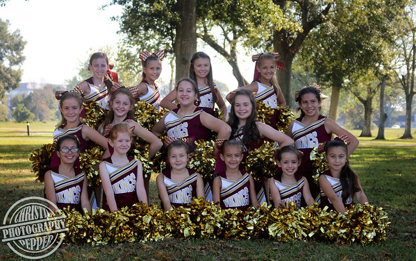 Viking Cheerleaders