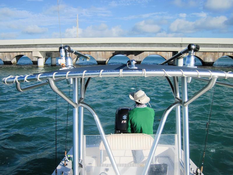 bridge fishing-1.jpg