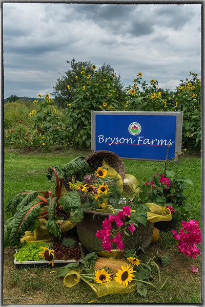 Bryson Farms
