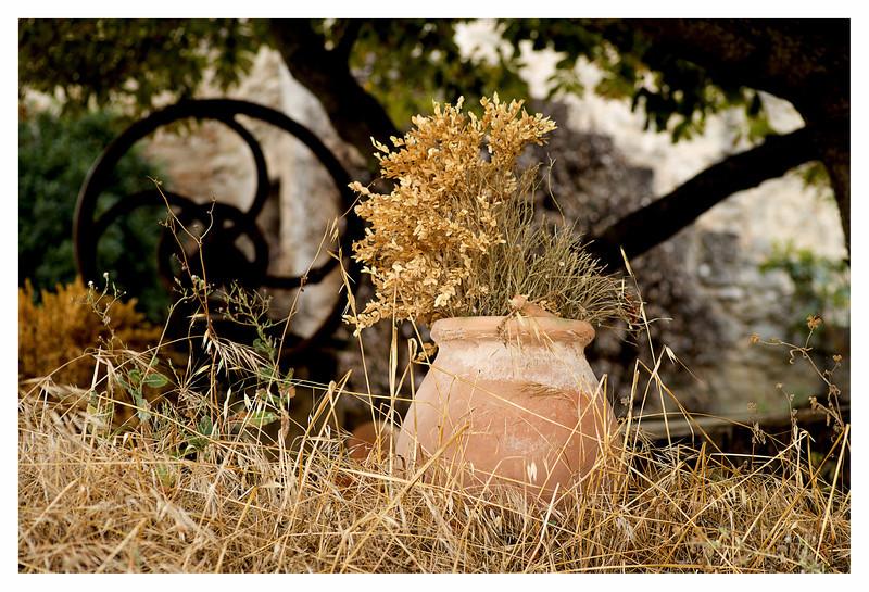 dry pot.jpg
