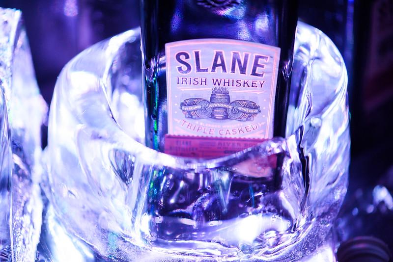 170717.mca.PRO.Slane.Party.158.jpg