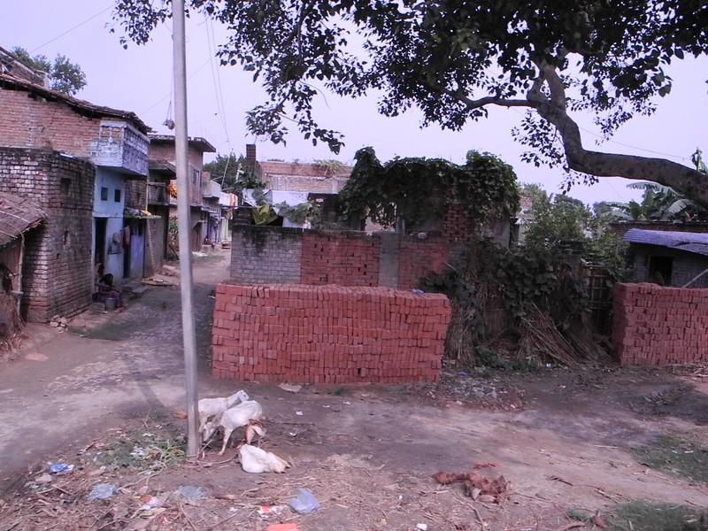 india&nepal2011 272.jpg