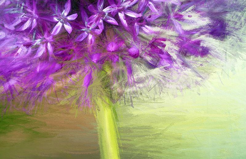 Floral Musings