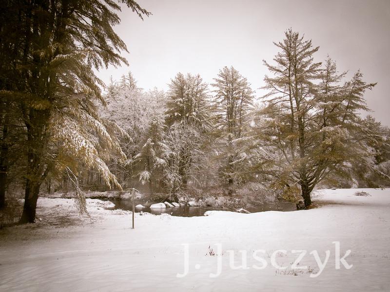 Jusczyk2020-1512.jpg