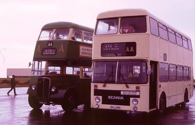 AA Buses