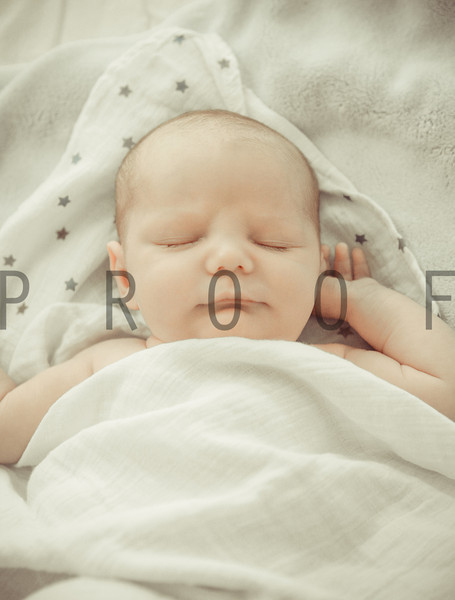 Declan Newborn Portraits