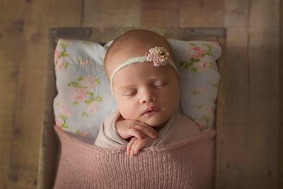 Genevieve B Newborn