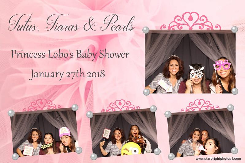 Lobo Baby Shower_11.jpg