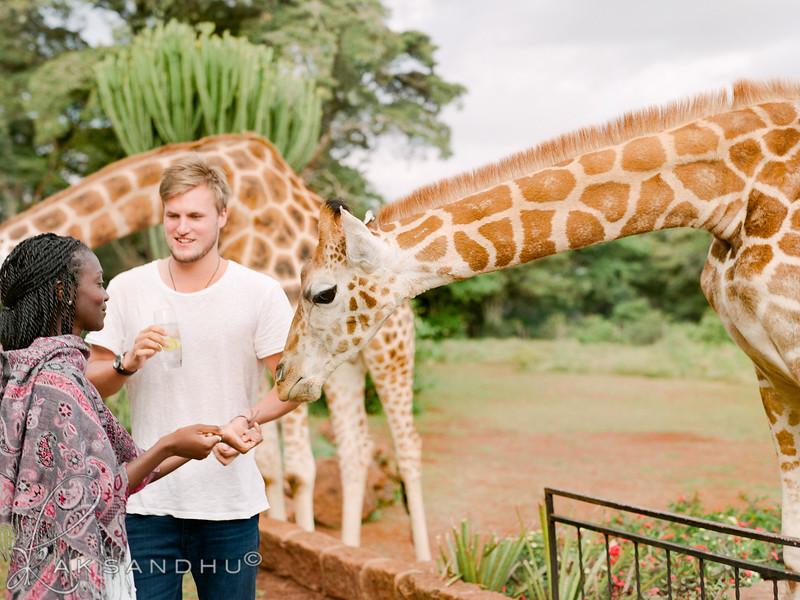 Safari-Africans-160.jpg