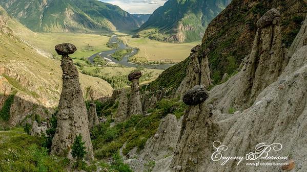 Altai Stone Mushrooms