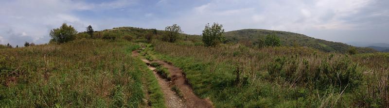 Art Loeb Trail (5,920')