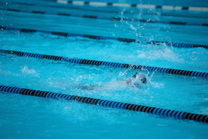 lcs_swimming_kevkramerphoto-1096.jpg