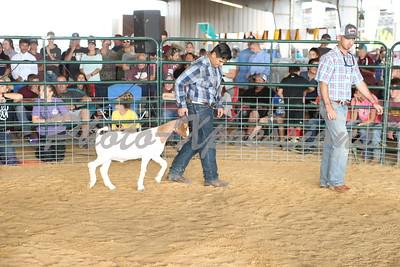 Goat Show Sunday Sept 23