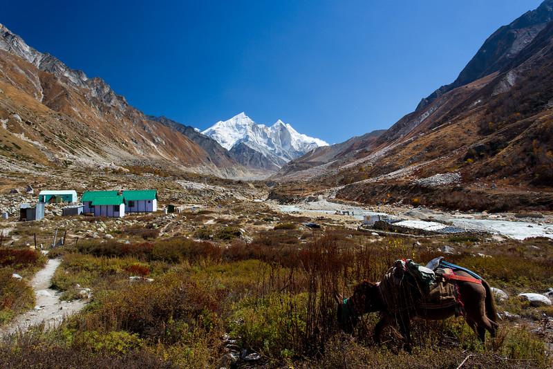 Himalayas 339.jpg