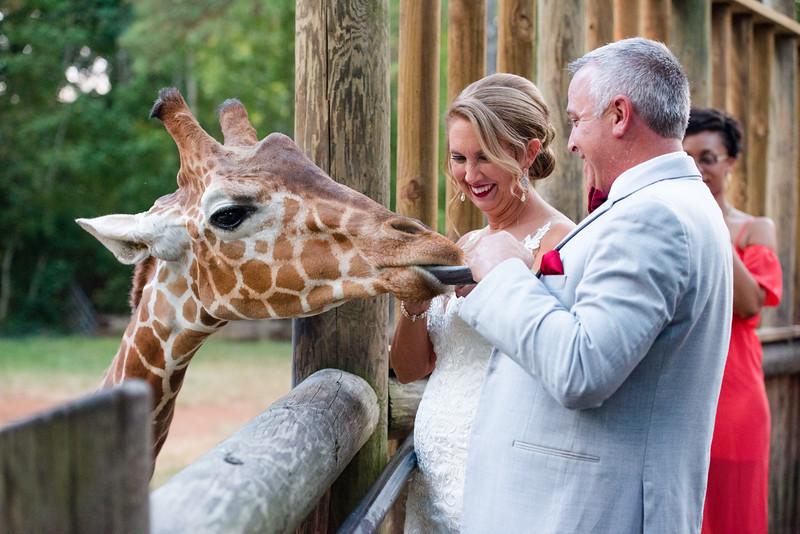 2017-09-02 - Wedding - Doreen and Brad 6189.jpg
