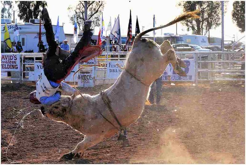 2019_04_07_Sfansler_O_02_ Not how to ride a bull.jpg