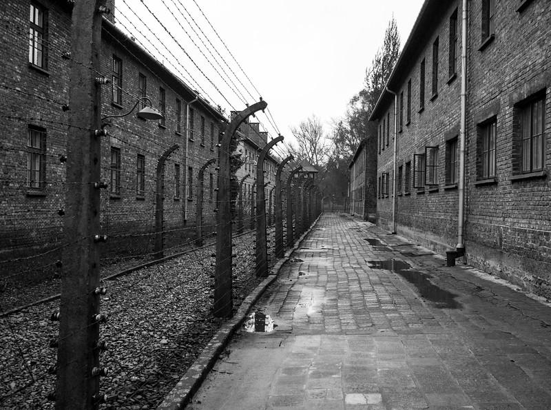 Auschwitz-Birkenau-12.jpg