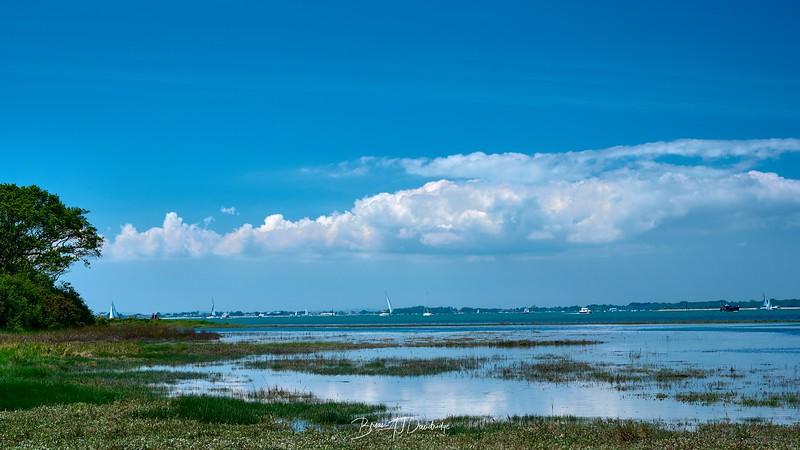 Chichester Harbour-8328 - 12-40 pm.jpg