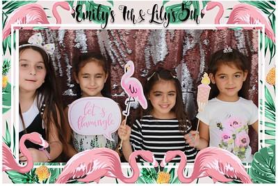 Emilys and Lilys Birthday