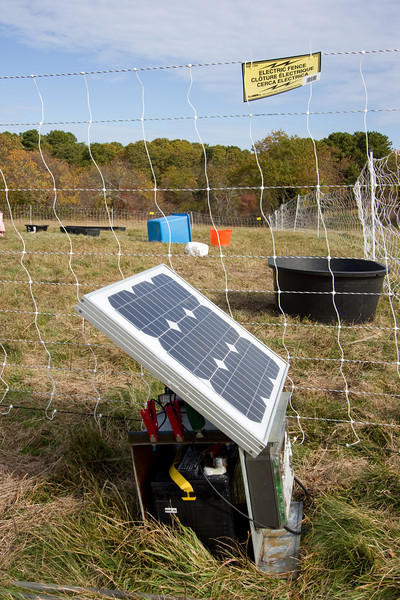 There is a solar electric fence.