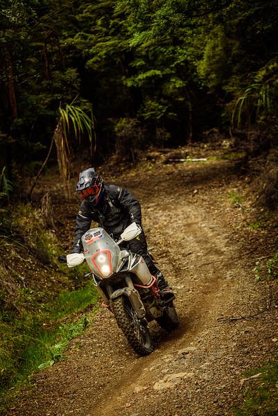 2019 KTM New Zealand Adventure Rallye (1315).jpg