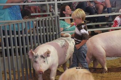 2013 Swine Pee Wee Showmanship