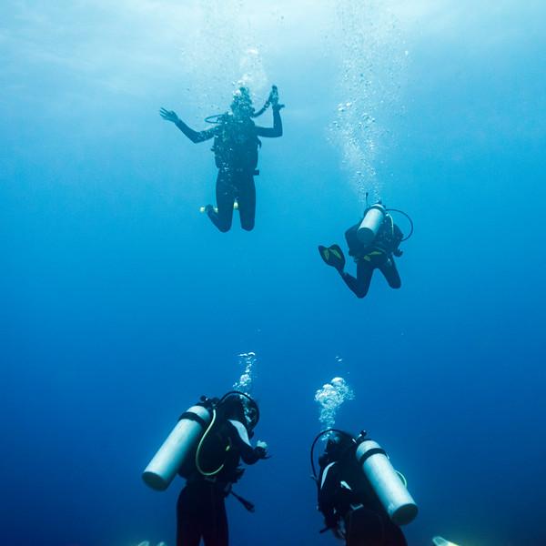 Scuba divers underwater, Belize Barrier Reef, Belize