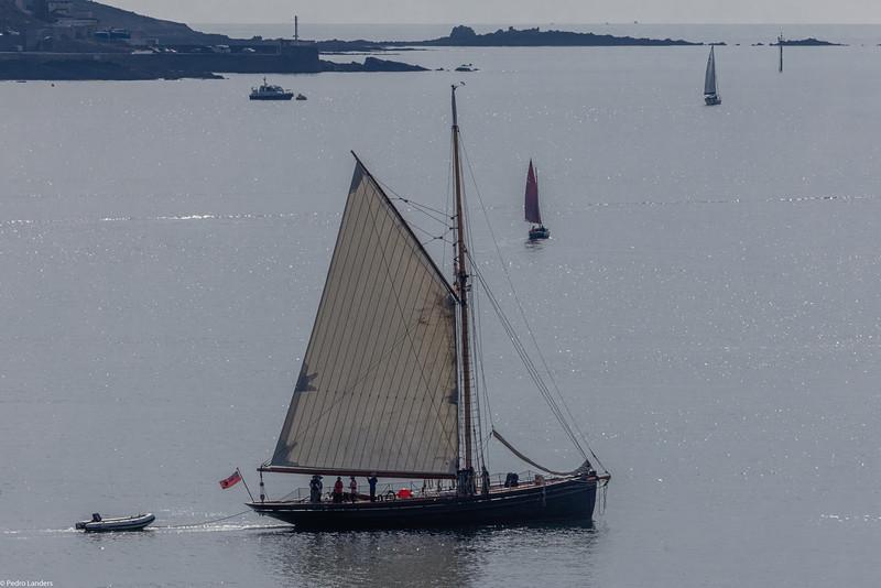 Sailing Ship Olga
