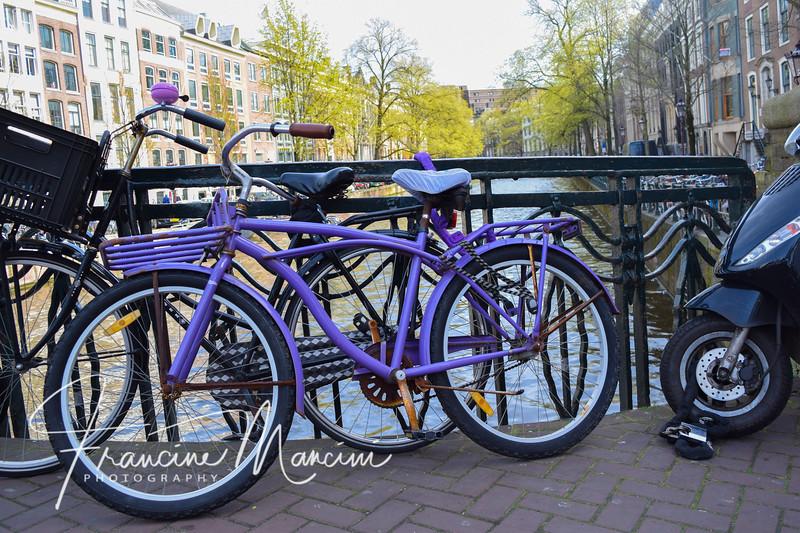 Amsterdam (822 of 845).jpg