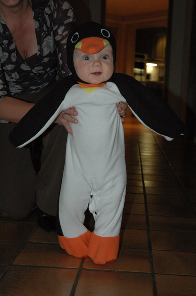 March of the Penguin 2 004.jpg