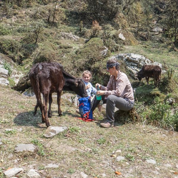 Nepal 156(20150414-DSCF2150)