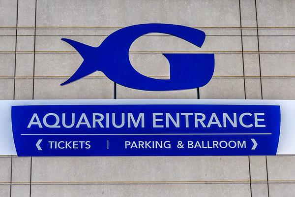 Atlanta Aquarium - 2-24-19
