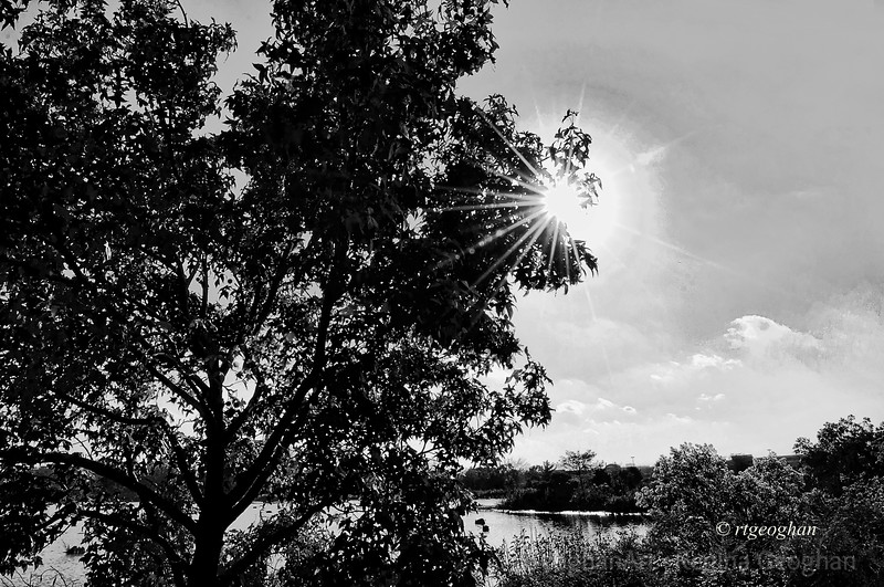 Day 280: NJ Meadowlands, Mill Creek Marsh - Oct 6.  Late afternoon sun going down.