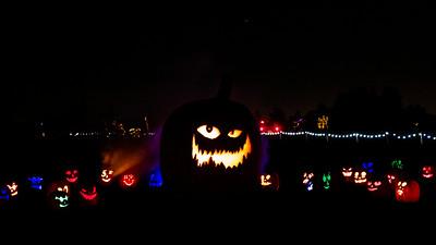 Pumpkins After Dark 2020