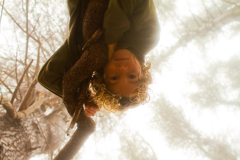 Ansel in the woods-0250.jpg